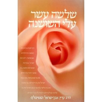 The Thirteen Petalled Rose by Adin Even-Israel - 9789655260632 Book