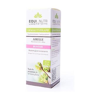 Organic lingonberry 30 ml