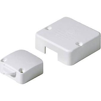 interBär 5120-003.05 Door lock switch 250 V AC 2 A momentary 1 dator