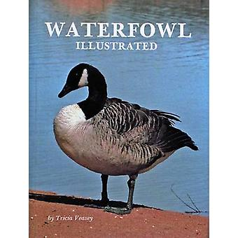 Waterfowl Illustrated by T. Veasey - 9780916838898 Book