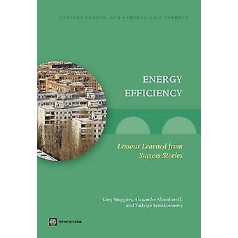 Energy Efficiency - Lessons Learned from Success Stories by Gary Stugg