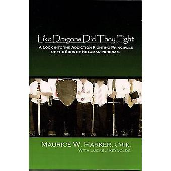 Like Dragons Did They Fight - A Look Into the Addiction Fighting Princ