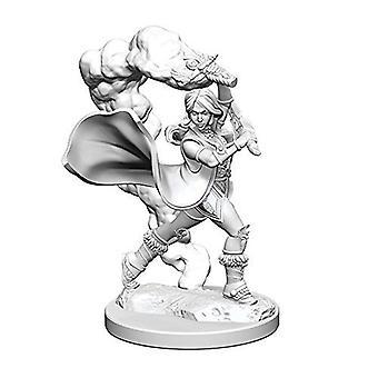 Pathfinder Deep Cuts Unpainted Miniatures Human Female Cleric (Pack de 6)