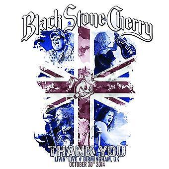 Black Stone Cherry - gracias importación USA de DVD/CD [DVD]
