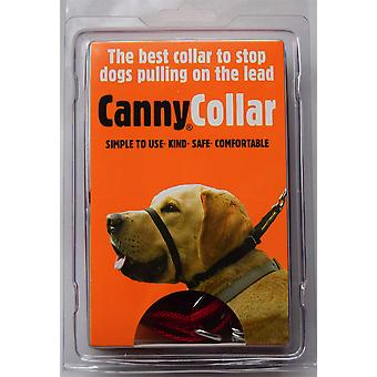 Canny Collar - Taille 6 - Rouge