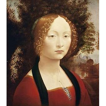 Ginevra DeBenci Poster trykk av Leonardo Da Vinci