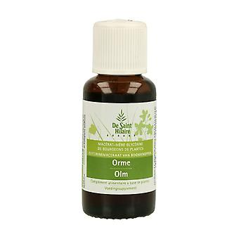 Organic Elm Macerate 30 ml