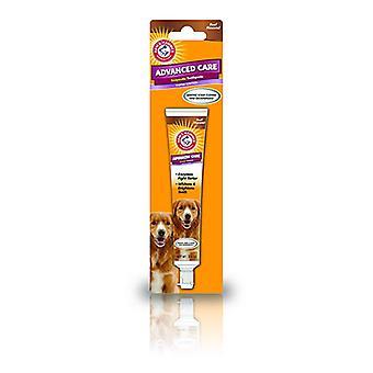 ARM & Hammer tartre contrôle chien boeuf dentifrice