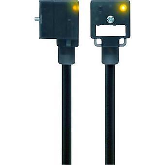 Escha 8047804 VA22-24.3-5/S370 Black Number of pins:2+PE bridged