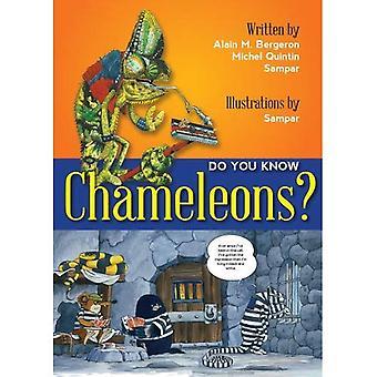 Do You Know Chameleons?