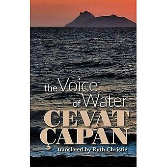 The Voice of Water (Paperback)