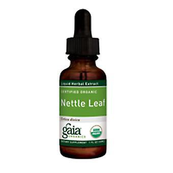 Gaia Herbs Organic Nettle Leaf، 4 أوقية