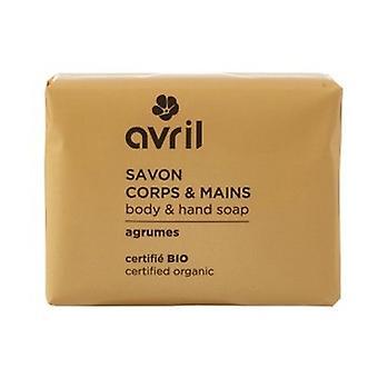 Provence citrus soap 100 g