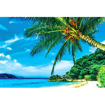 Foto Wandmalerei Strand auf Similan Island