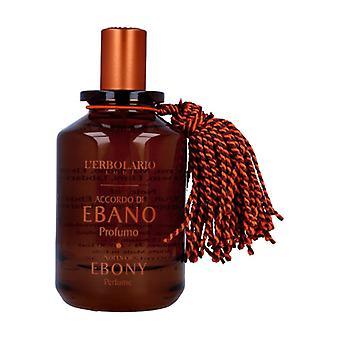 Ebony Perfume Agreement 100 ml (Citric - Tangerine - Scented woods)
