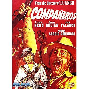 Companeros (English Version) [DVD] USA import
