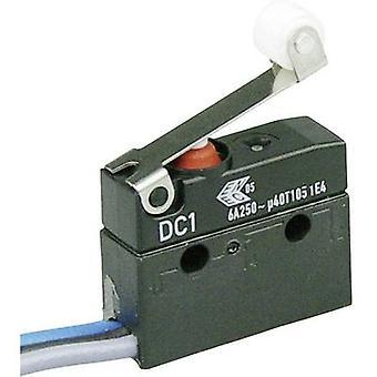 ZF Microswitch DC1C-C3RB 250 V AC 6 A 1 x On/(On) IP67 momentary 1 pc(s)