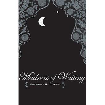 De waanzin van het wachten (Zubaan Books)