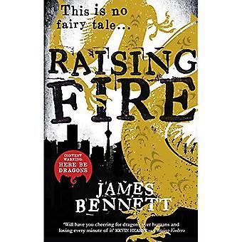 Verhogen van vuur (Ben Garston roman)