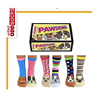 Unidos Oddsocks Doggy meias - presentes para adolescentes