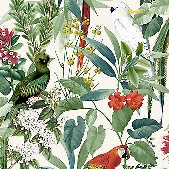 Jungle Birds Wallpaper Tropical Parrots Floral Tree Green White Paste Wall Vinyl
