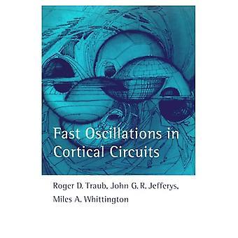 Oscilaciones rápidas en circuitos corticales