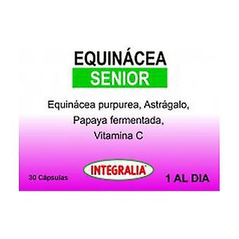 Echinacea Senior 30 capsules