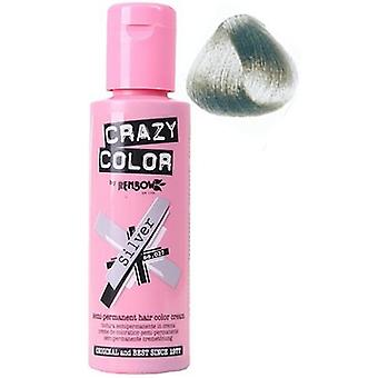 Crazy Color Hair Color 27 Silver
