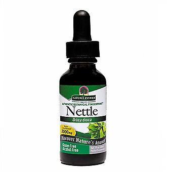 Nature's Answer Nettle Leaf, Alcohol Free Extract 1 FL Oz