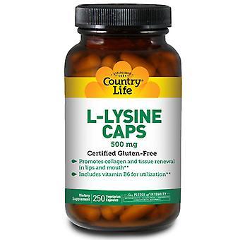 Country Life L-Lysiini B-6: lla, 500 MG, 250 korkkia
