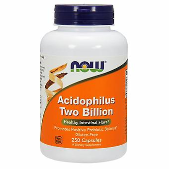 Now Foods Acidophilus, 2 Billion, 250 Caps