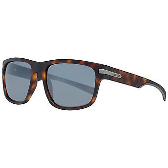 Polaroid sunglasses pld 2066_s n9p55