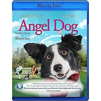 Import USA Angel Dog [Blu-ray]