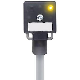 Escha 8047822 VA41-24.2-5/P01 Black Number of pins:3+PE wire