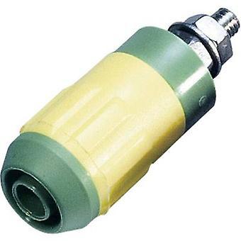 Stäubli XUB-G Stikdåse, lodret lodret pindiameter: 4 mm grøn, gul 1 stk.