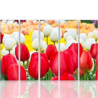 Cinque parti immagine su tela, Pentaptych, tipo C, tulipani bianchi e rossi