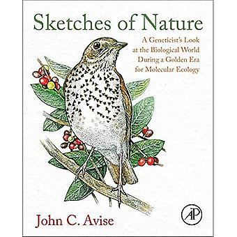 Sketches of Nature: A Geneticist's Look at the Biological World During a Golden Era of Molecular Evolution