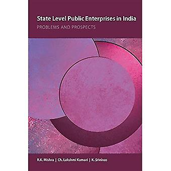 Valtion tasolla julkisten yritysten Intiassa: suorituskyvystä ja kehitysnäkymistä