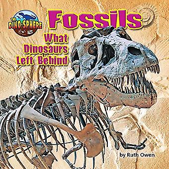 Fossils: What Dinosaurs Left