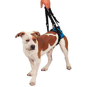 KVP Arnés De Movilidad Trasero XS (Dogs , Collars, Leads and Harnesses , Harnesses)