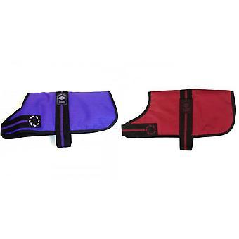 Outhwaite Padded Fashion Dog Coat
