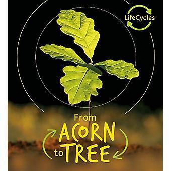 Lifecycles - Acorn to Tree by Camilla de la Bedoyere - 9780711243682