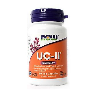 UC II 60 vegetable capsules