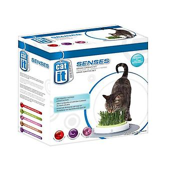 Catit CATIT SENSES JARDIN DE GRAMA (Cats , Cat Nip, Malt & More)