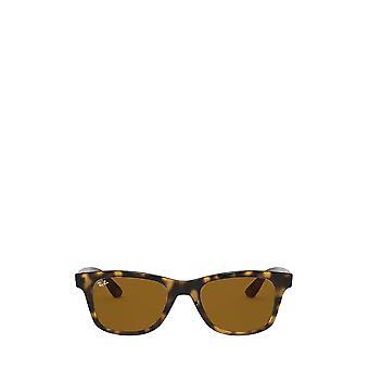 Ray-Ban RB4640 light havana unisex sunglasses
