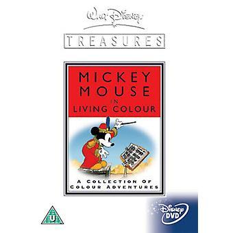 Walt Disney Treasures Mickey in Living Colour - 1935 bis 1938 DVD (2004) Walt Region 2