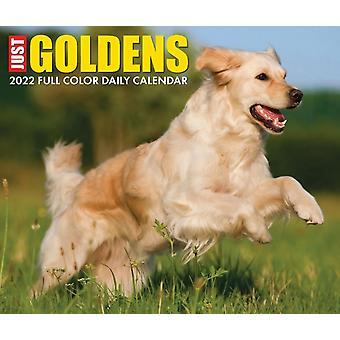 Golden Retrievers 2022 Box Kalender Dog Breed Daily Desktop av Willow Creek Press