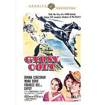 Importação de EUA Gypsy Colt [DVD]
