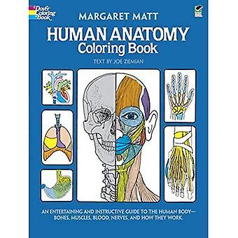 Menselijke anatomie kleurboek