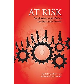 At Risk: Social Justice in Child Welfare and Other Human Services